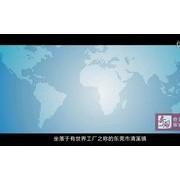 安徽新涛光电(国际)科技有限公司宣传片Ver2016 (112播放)