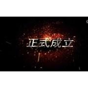 常州特丽特光电科技有限公司企业宣传片2015 (102播放)