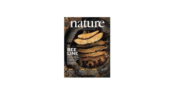 11月12日《自然》杂志内容精选
