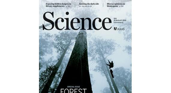 8月21日《科学》杂志精选