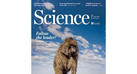 6月19日《科学》杂志精选