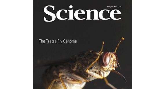 4月25日《科学》杂志精选